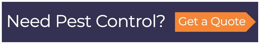 pest-control-quote